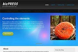 BizPress