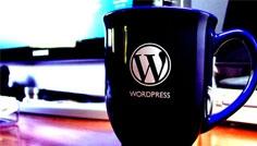 Actualités Wordpress