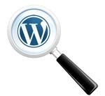 fonction-recherche-wordpress